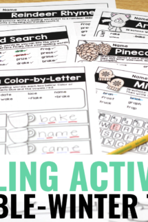 winter spelling activities - editable for any word list!
